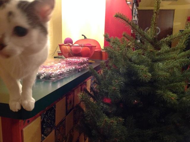 2_prezenty_pd_choinke_pomysly_na_choinke_ekologiczne_swieta_xmas_gifts_christmas_tree_ideas_green_and_ecological_holiday
