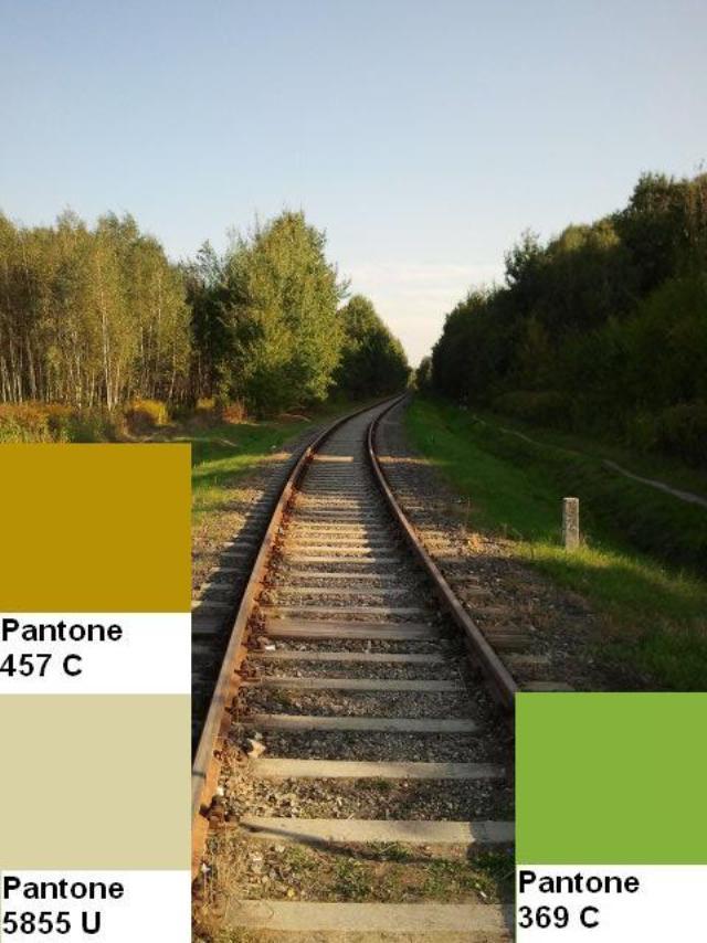 15 colors of the fall pantone palette kolory jesieni projektowanie wnetrz interio design inspiracje home decor ideas pomysly do domu