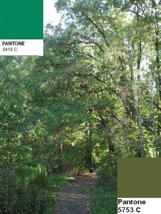 16 colors of the fall pantone palette kolory jesieni projektowanie wnetrz interio design inspiracje home decor ideas pomysly do domu