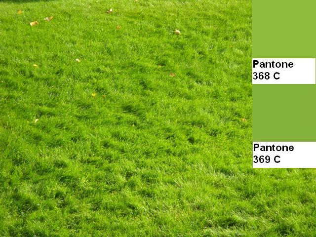 2 colors of the fall pantone palette kolory jesieni projektowanie wnetrz interio design inspiracje home decor ideas pomysly do domu