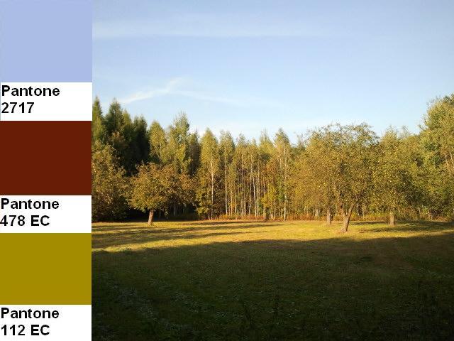 21 colors of the fall pantone palette kolory jesieni projektowanie wnetrz interio design inspiracje home decor ideas pomysly do domu