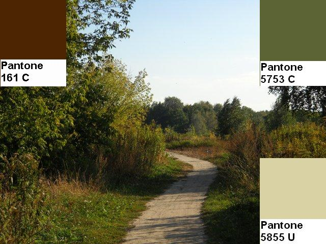 4 colors of the fall pantone palette kolory jesieni projektowanie wnetrz interio design inspiracje home decor ideas pomysly do domu