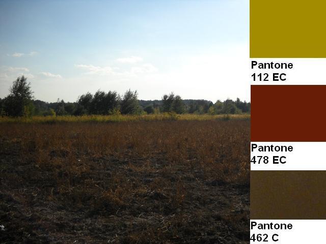 5 colors of the fall pantone palette kolory jesieni projektowanie wnetrz interio design inspiracje home decor ideas pomysly do domu