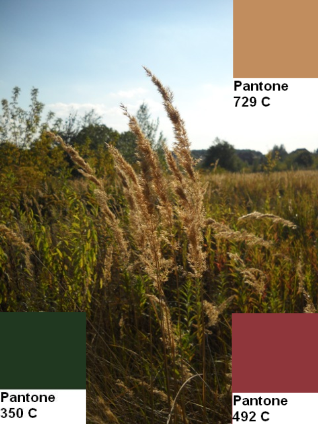 6 colors of the fall pantone palette kolory jesieni projektowanie wnetrz interio design inspiracje home decor ideas pomysly do domu