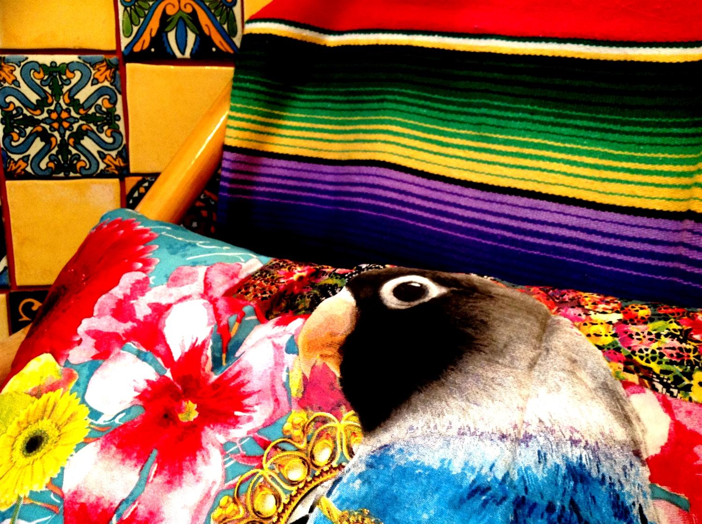 4 melli mello styl meksykanski wnetrze boho kolorowe kafelki meksykanskie plytki projektowanie wnetrz interior design mexican style santa fe home colorful tiles serape