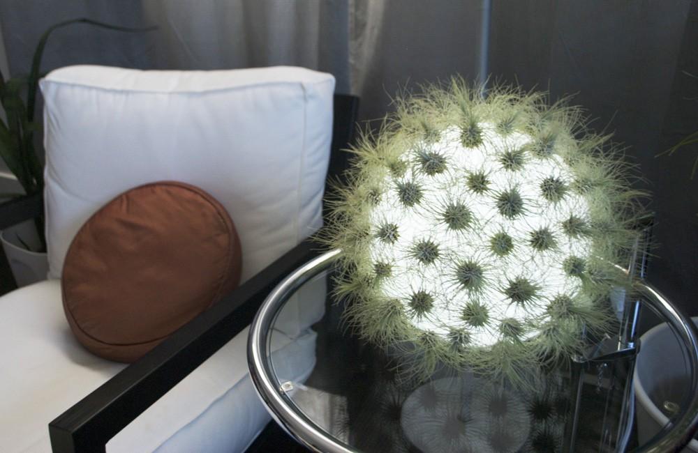 12 Live Lamp designed by Kara Bartlet for to(HOLD) cactus inspired furniture design meble insirowane natura interior design home decor ideas pomysly do mieszkania rosliny