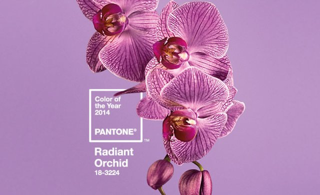 6_pantonecoloroftheyear2014radiantorchid__prezenty_pd_choinke_pomysly_na_choinke_ekologiczne_swieta_xmas_gifts_christmas_tree_ideas_green_and_ecological_holiday