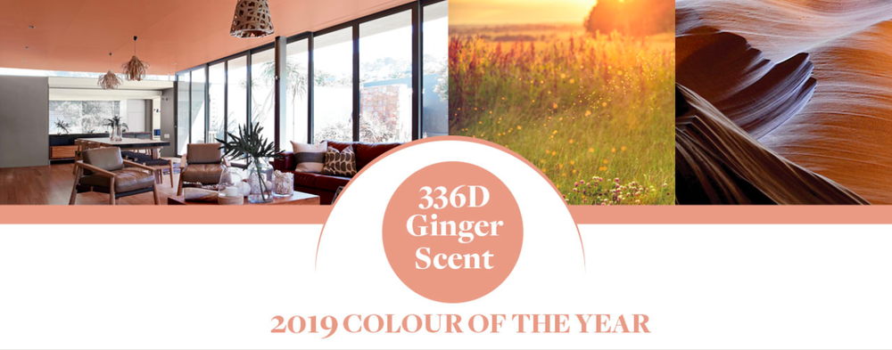 1 PARA kolory roku 2019 ginger scent design forelements blog